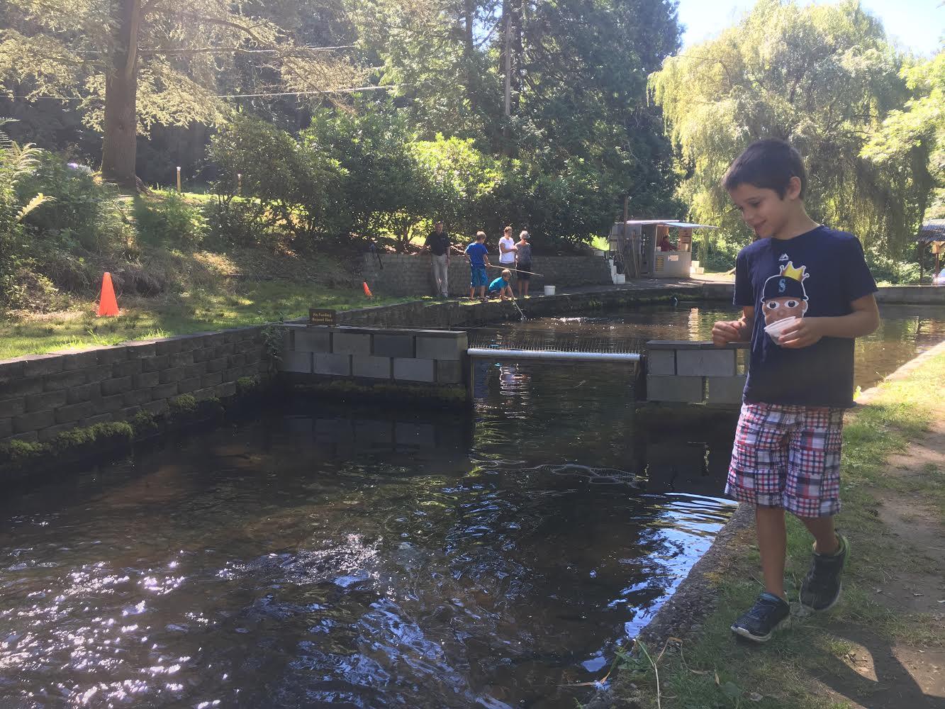 Gold creek trout farm