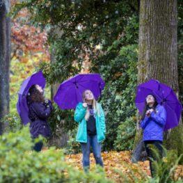 fall-winter hikes