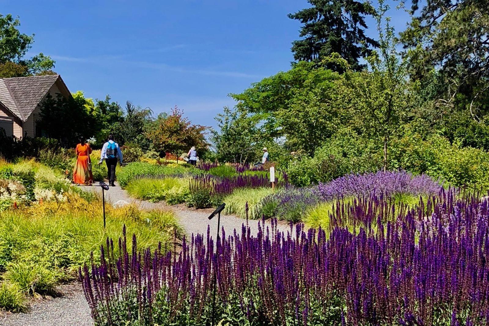 Garden Parks:Bellevue Botanical Garden