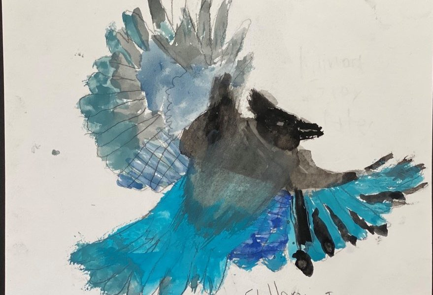 child drawing of bird