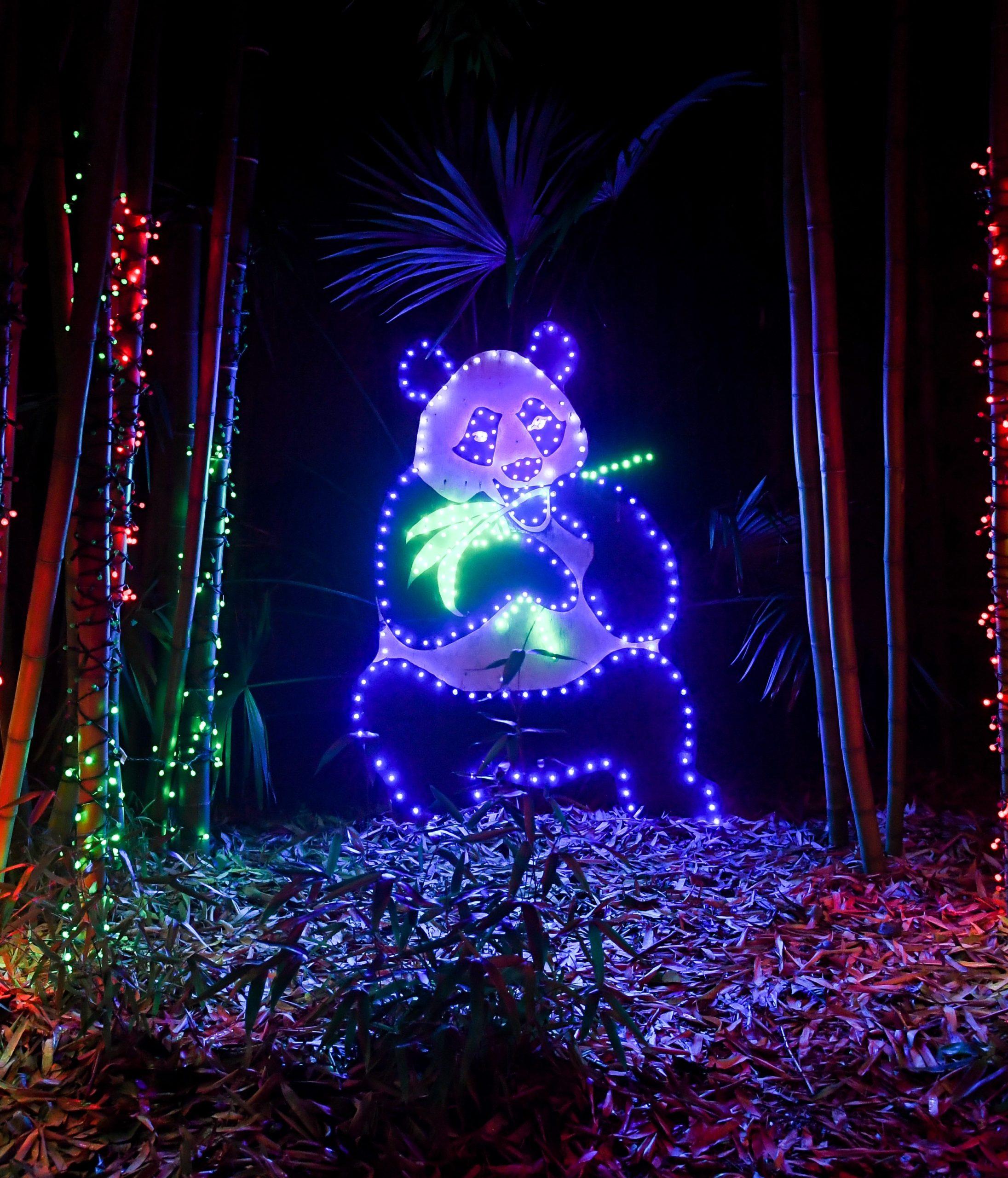 holiday lights zoolights