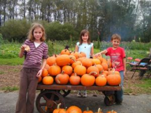 Kids and pumpkins at Carnation Fars