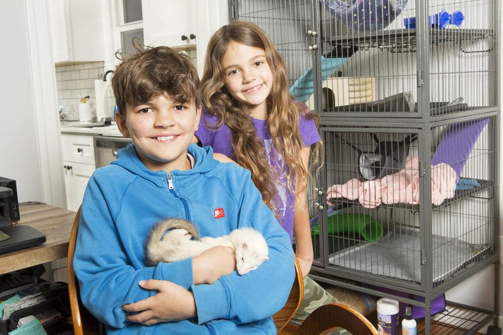kids pet ferret November 2020