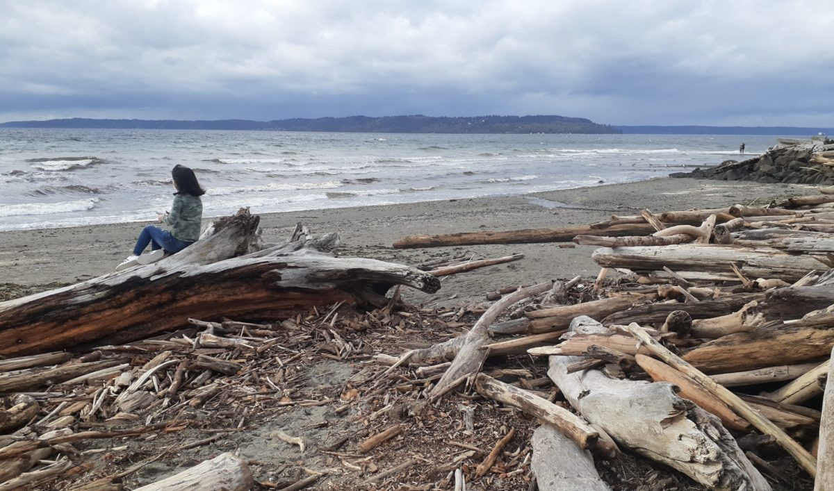 Girl looks out at rough seas from driftwood log at Saltwater State Park