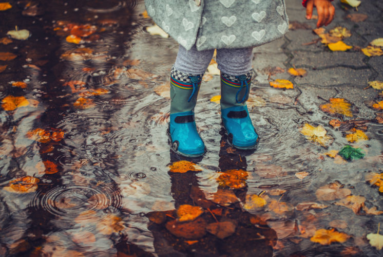 Thanksgiving break: small girl's feet in puddle with leaves