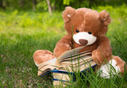 HiCap Amplified piece teddy bear with books