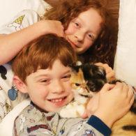 hon mention family pet contest