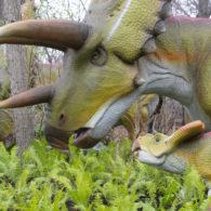 Dinosaurs Woodland Park Zoo