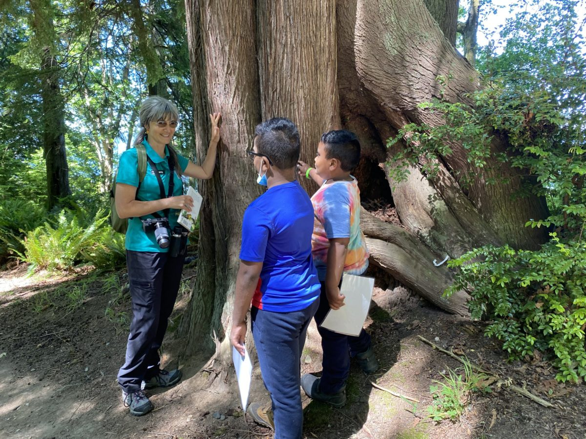 Nature Guide talking to kids about tree barl