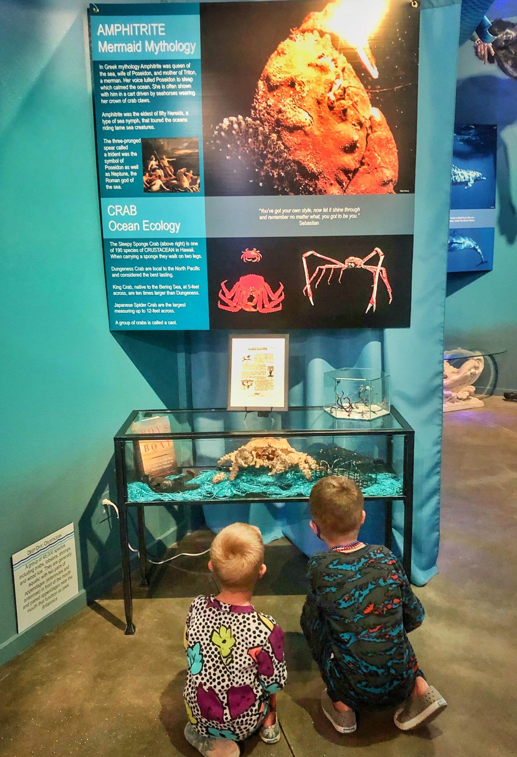 International mermaid museum, Westhaven Westport