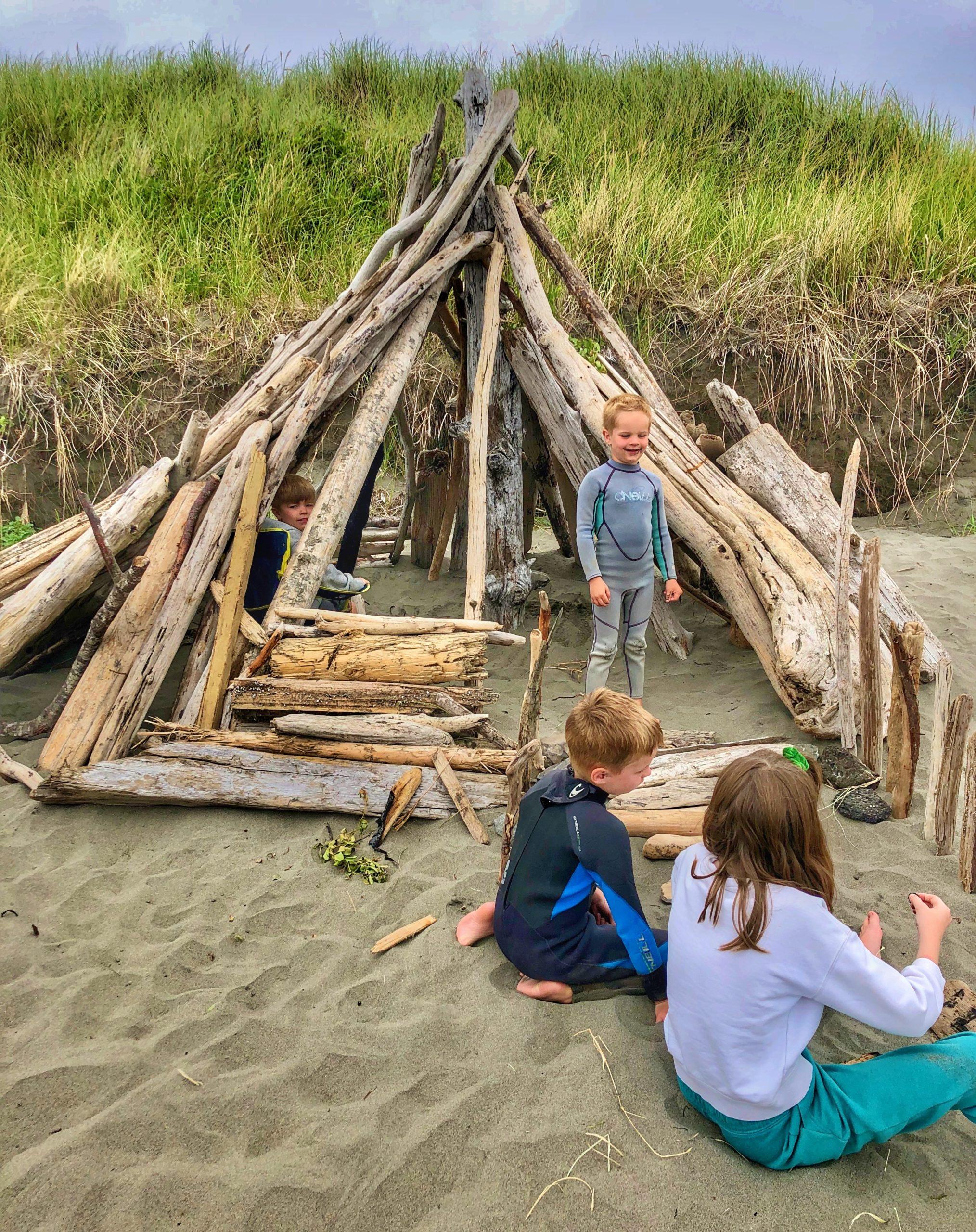 Westhaven beach driftwood