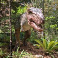 Dino Don t. rex