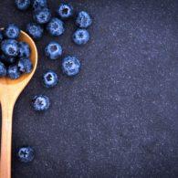 blueberry recipe contest