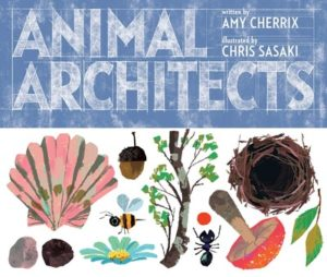 animal architects cover